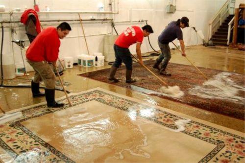 Irana persian carpets, ,Milano, Cinisello Balsamo 21